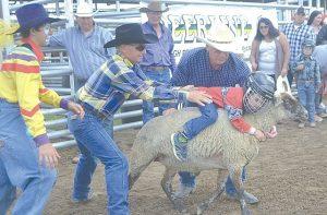 PIC – Ride-em, cowboy!