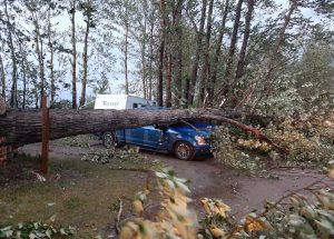 Windstorm rips Spruce Point Park