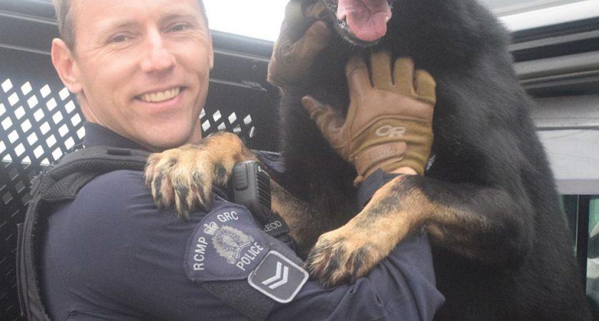 Dog handler happy to be in HP region