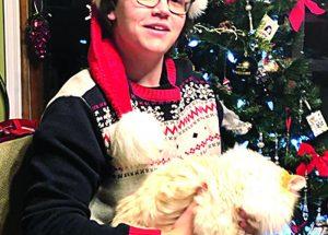 HP Library presents virtual Christmas card
