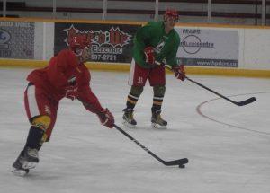 Wings on thin ice to resume season