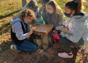 HPE students learning all about the forest